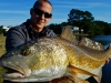 David Graham Redfish
