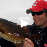 Suspending Jerkbaits for Coldfront Smallies