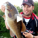 When Smallmouth Bass and Crayfish Collide