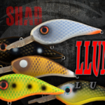Llungen Lures Catches Musky Anglers with Release of the Chad Shad Crankbait